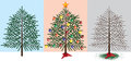 Christmas tree stages before during and after the holidays Stock Photography