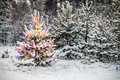 Christmas tree in winter forest Royalty Free Stock Photo