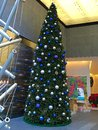 Christmas tree at world trade center Royalty Free Stock Photos