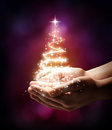 Christmas tree in your hand red stardust on dark background Stock Image
