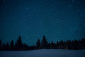 Christmas trees on the background of the starry winter sky. Royalty Free Stock Photo