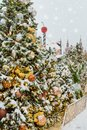Christmas trees decorated with balls and lights, garlands covered with snow on Red Square in the evening. Moscow Royalty Free Stock Photo
