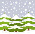 Christmas trees in nature Royalty Free Stock Photo