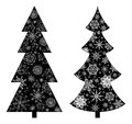 Christmas trees, silhouette Stock Photography