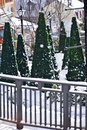 Christmas trees in a ski resort village Royalty Free Stock Image