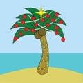 Christmas tropical Στοκ εικόνα με δικαίωμα ελεύθερης χρήσης