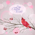 Christmas vector snowy rowan berries bird card with frozen tree branches singing red waxwing snowflakes speech bubble greeting Royalty Free Stock Photo