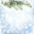 Christmas winter background with snow fir tree Royalty Free Stock Photo