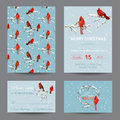 Christmas Winter Birds Greeting Cards Royalty Free Stock Photo