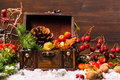 Christmas winter composition with chest, apple, nuts, cones, ber Royalty Free Stock Photo