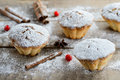 Christmas winter food composition: cakes in icing sugar with cranberry and cinnamon Royalty Free Stock Photo