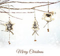 Christmas wooden ornaments hanging on snowy branch Stock Images