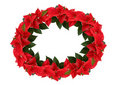Christmas wreath from poinsettia Royalty Free Stock Photos
