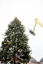 Christmas xmas tree assemblage by crane and workers in modern city france Stock Photography