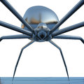 Chrome spider on a on white background. Close-up Stock Image