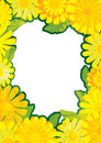 Chrysanthemum Frame_eps Stock Photos
