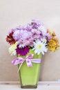 Chrysanthemums Flowers In Gree...