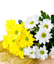 Chrysanthemums on  straw hat Stock Image