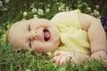 Chubby laughing baby girl laying afuera en prado de la flor Fotografía de archivo libre de regalías