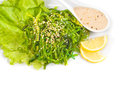 Chuka Seaweed Salad Royalty Free Stock Photo