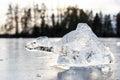 Chunk of ice looks like imagery animal Royalty Free Stock Photo