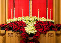 Church altar with poinsettias Stock Images