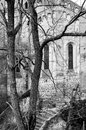 Church behind trees in black and white Royalty Free Stock Photo