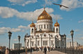 Church of christ the saviour in moscow day shot famous s sunny with blue sky made from bridge with a bird flying by Royalty Free Stock Images