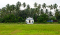 Church in goa between the green fields Royalty Free Stock Photo