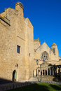 Church of santa maria and the palace of olite navarre spain Royalty Free Stock Photos