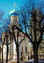 Church and tree in sunny day. Royalty Free Stock Photo