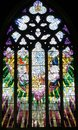 Church Window Saint David's Cathedral Hobart, Tasmania Royalty Free Stock Photo