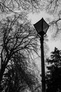 Churchyard lamp victorian in a amongst trees Stock Image