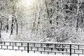 Cichy śnieżysty miastowy park Zdjęcia Royalty Free