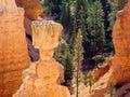 Cierre del Capstone del martillo del Thor para arriba Imagen de archivo