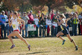 CIF State Cross Country Championships 2011 Royalty Free Stock Photography