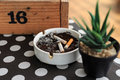 Cigarette stub on ashtray Royalty Free Stock Photo