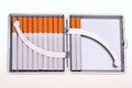 Cigarettes in luxury cigarette case Royalty Free Stock Photography