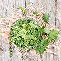 Cilantro fresh portion as detailed close up shot Royalty Free Stock Image