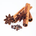 Cinnamon anise and cloves on white background sticks powder Royalty Free Stock Photo