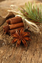 Cinnamon and aniseed Stock Photography
