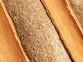 Cinnamon bark Royalty Free Stock Photo