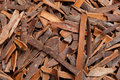 Cinnamon Bark Background Royalty Free Stock Image