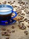 Cinnamon and coffee beans with cup on saucer Stock Images