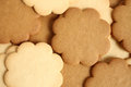 Cinnamon and milky cookies for backgrounds or textures Stock Photos