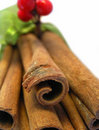 Cinnamon Sticks I Stock Images