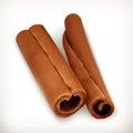 Cinnamon, vector icons