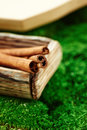 Cinnamon in a wooden box on the background of lush green dutch moss close Royalty Free Stock Photography