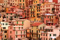 Cinque terre town of manarola the hillside shown in a little detail Royalty Free Stock Image