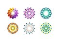 luxury, ornament, flower, logo, beauty, circle, floral, vector, design, circular flowers symbol icon